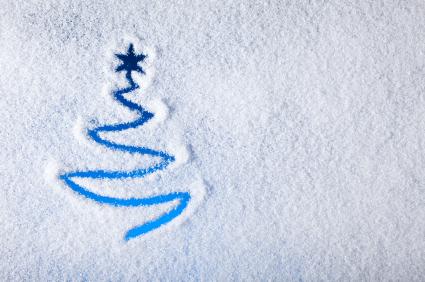 елка в снегу фото