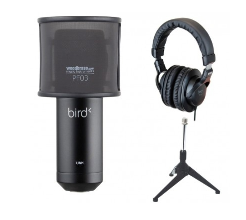 Micro d'enregistrement home studio - Bird UM1